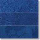 1VS0033 REEF BLUE